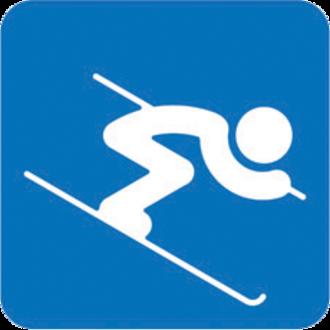Alpine skiing at the 2014 Winter Olympics - Image: Alpine Skiing, Sochi 2014