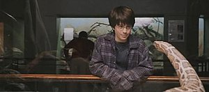 Harry Potter with a Burmese python in the Rept...