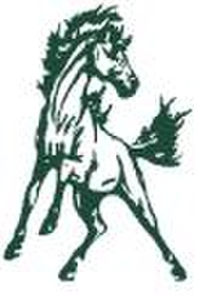 Lakewood Ranch High School - Lakewood Ranch Mustang logo