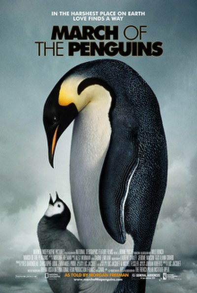 Picture of a movie: March Of The Penguins