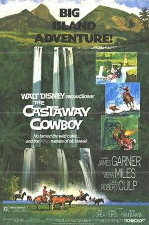The Castaway Cowboy - Theatrical poster