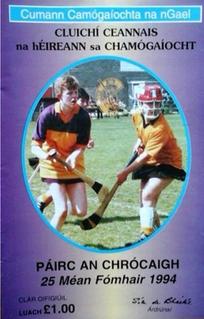1994 All-Ireland Senior Camogie Championship Final Football match