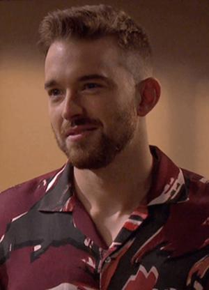 Will Horton - Chandler Massey as Will Horton