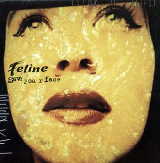 Save Your Face - Image: Feline SY Fcover