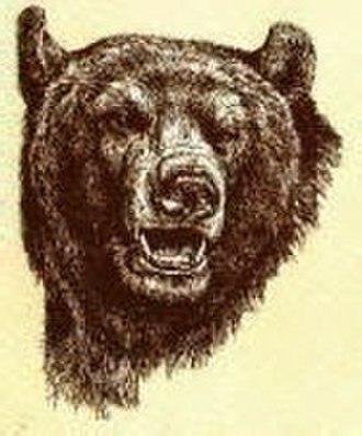 Hammond High School (Columbia, Maryland) - The Golden Bear