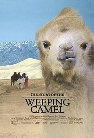 The Story of the Weeping Camel - Image: The Story of the Weeping Camel