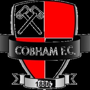 Cobham F.C. - Image: Cobham F.C. logo