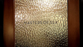 <i>Masters of Sex</i> American period drama television series