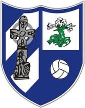 Monasterevin G.F.C. - Image: Monasterevin GF
