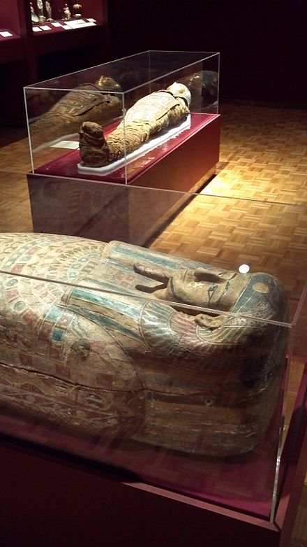The Egyptian gallery showcases a sarcophagus, a Roman era Egyptian mummy and the mummy of a woman named Tutu who died approximately 332 BCE. Mummy at mabee-gerrer museum.jpg