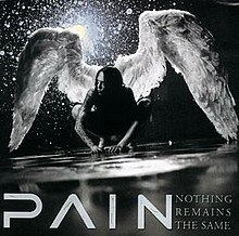 Pain-nothing remains the same.jpg