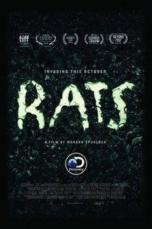 Rats 2016 Film Wikipedia