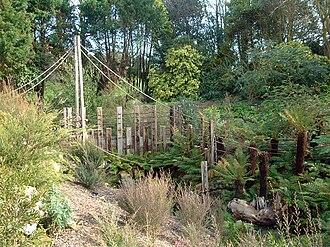 Ventnor Botanic Garden - The Australian section within The Gardens, February 2007.