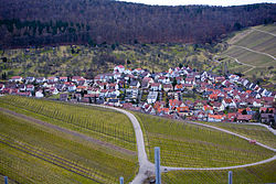 View of one district, with vineyards in the foreground