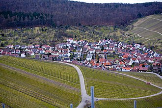 Weinstadt - View of one district, with vineyards in the foreground