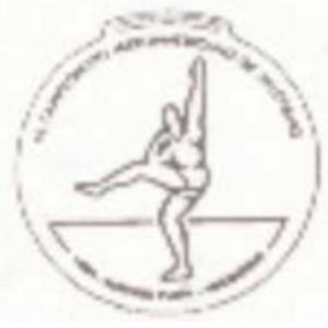 1994 Ibero-American Championships in Athletics - Image: 1994 Ibero American Championships in Athletics logo