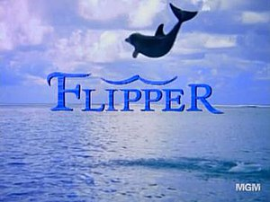 Flipper (1995 TV series) - Season 1 title card