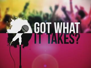 <i>Got What It Takes?</i> British television series