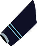 Flight Lieutenant