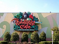 Rainforest Cafe Lake Buena Vista Fl