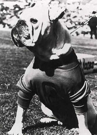 Uga (mascot) - Uga I