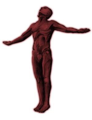 UP Fighting Maroons - The oblation was used in broadcasts as the logo of the UP Fighting Maroons prior to July 2015.