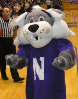 Willie the Wildcat (Northwestern) - Image: Williethewildcatnu
