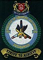 120Sqn shoulder patch (old).jpg