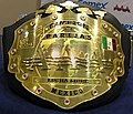 AAA World Tag Team Championship.jpg