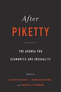 <i>After Piketty</i> Collection of essays edited by the economists Heather Boushey, J. Bradford DeLong, and Marshall Steinbaum