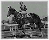 Beldame the horse (Frank O'Neill riding).jpg