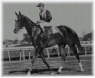Beldame - Image: Beldame the horse (Frank O'Neill riding)