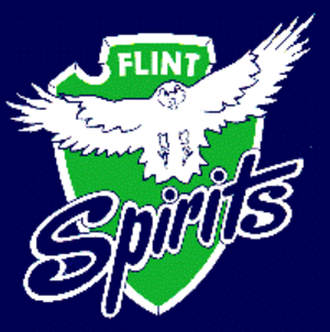 Flint Spirits - The Flint Spirits logo used for the 1988–89 season.