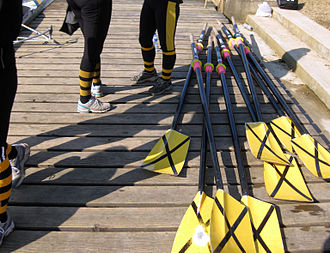 Linacre College, Oxford - Linacre College rowing blades.