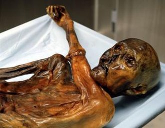 Ancient history -  The oldest mummy in the world, nicknamed Ötzi, 3300 BC, found with equipment considered advanced for its time, north of Bolzano in Italy