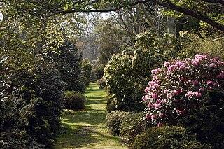 Polly Hill Arboretum American nonprofit organization