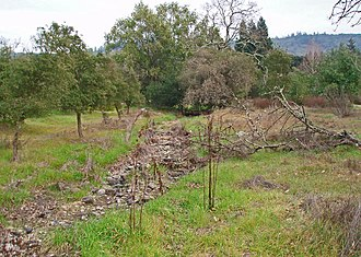 Spring Creek (Sonoma County, California) - Spring Creek streambed high in headwaters area