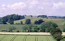 View harnham hill.jpg