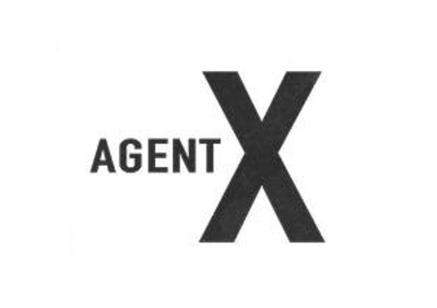 Picture of a TV show: Agent X