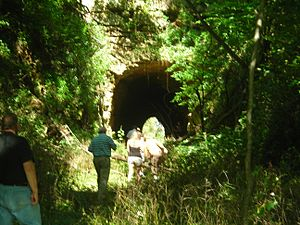 Galena and Southern Wisconsin Railroad - Image: Buncombe Tunnel