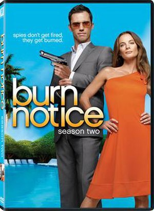 Burn Notice (season 2) - Image: Burn Notice Season Two DVD