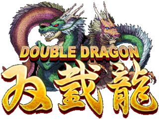 <i>Double Dragon</i> video game series
