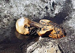 250px OetzitheIceman glacier 199109a New research into frozen mummy reveals heritage