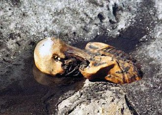 Ötzi - Ötzi the Iceman while still frozen in the glacier, photographed by Helmut Simon upon the discovery of the body in September 1991