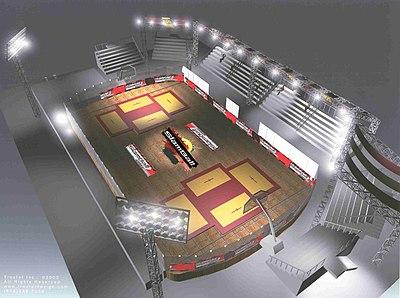 Slamball court
