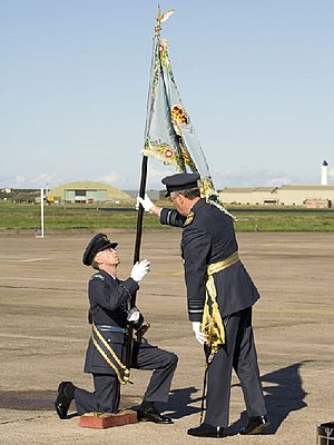 No. 2622 Squadron RAuxAF Regiment - The 2622sqn RAuxAF Regiment standard is presented to an officer on 30 September 2006