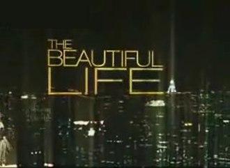 The Beautiful Life: TBL - Series intertitle
