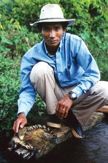 Chut Wutty Cambodian environmental activist.jpg
