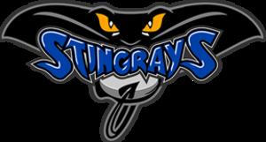 Hull Stingrays - Image: Hull Stingrays logo