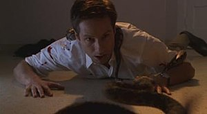 Signs and Wonders (The X-Files) - Image: Signs and wonders x files